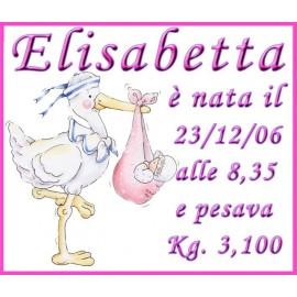 Cartello nascita rosa femminuccia