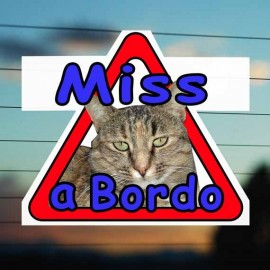 Adesivo Gatto a bordo con foto